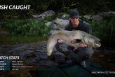 Fishing Sim World (PC)